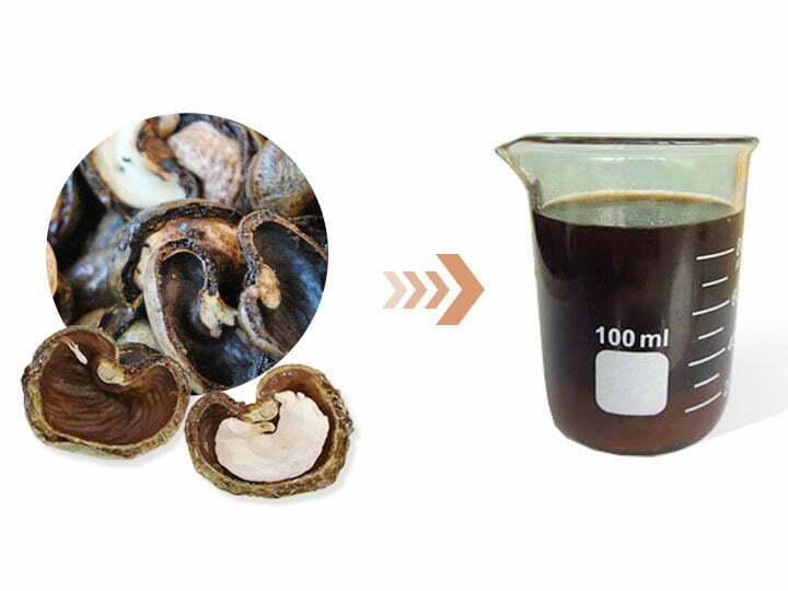 Cashew nutshell and liquid